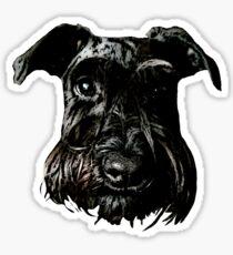 Black Schnauzer Gaze Sticker