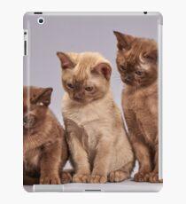 Cat Trio iPad Case/Skin