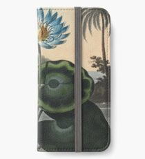 Botanical illustration: Blue Egyptian water lily by Robert Thornton – State Library Victoria iPhone Wallet/Case/Skin
