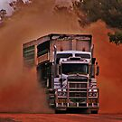 Bulldust & Mulga Country by Jemma Ryan