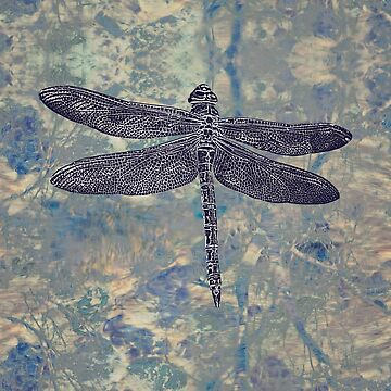 Dragonfly by LindaLees