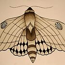 Moth design by cocodesigns