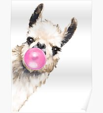 Sneaky Llama with Bubble Gum Poster