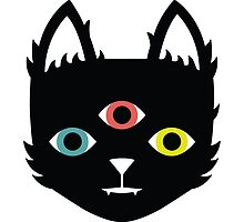 Three Eyed Cat by lisamax
