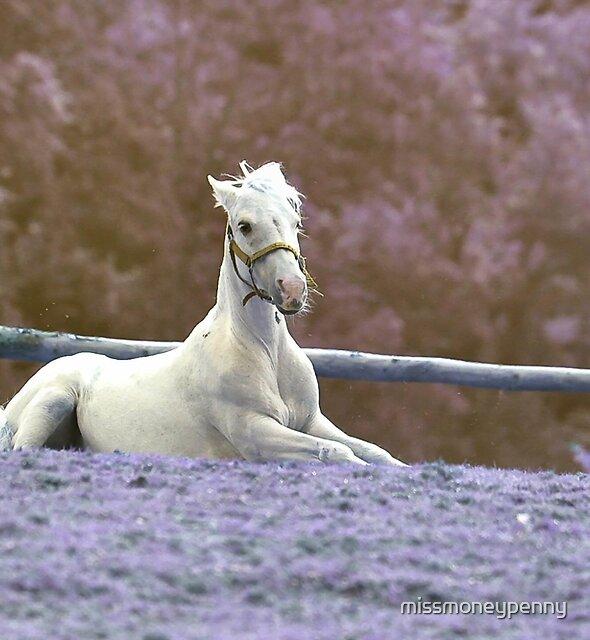 Pony in pastels by missmoneypenny