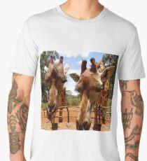 Giraffes over the fence Men's Premium T-Shirt