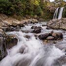Tawhai Falls  by autumnleaf