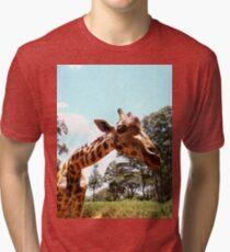 Giraffe getting personal 2 Tri-blend T-Shirt