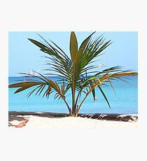Carribean Beach Photographic Print
