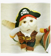 Pets Pirate Costume Suit Poster