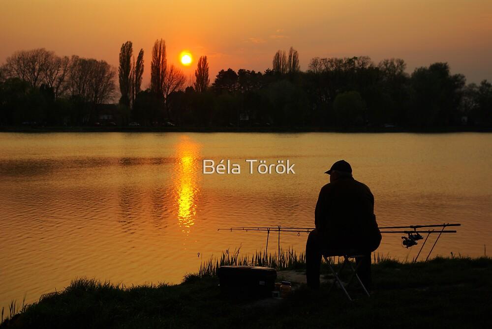 Angler at sunset by Béla Török