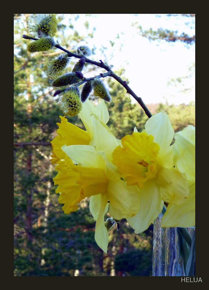 Easter Flowers by HELUA