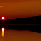 Algonquin Park - Brewer Lake Sunset by Jim Cumming
