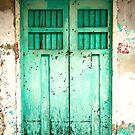Sea Green Door by Hena Tayeb