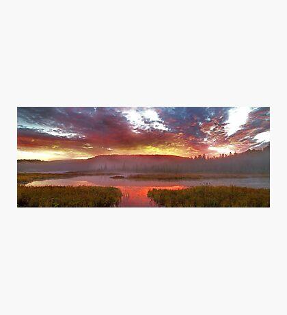 Algonquin Park - Costello Creek Photographic Print
