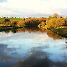 evening reflection by Finbarr Reilly