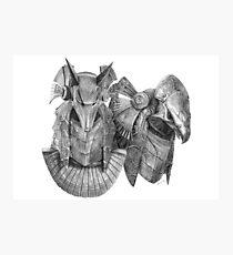 Stargate Horus & Anubis Masks Photographic Print