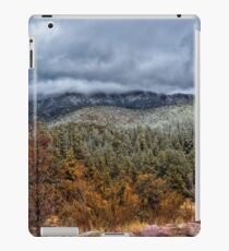 Storm On The Mountain iPad Case/Skin