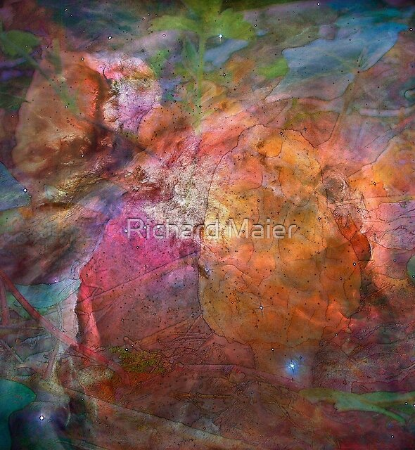 Cosmic Mushrooms 1 by Richard Maier