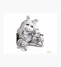 Kermit and Miss Piggy - Ballpoint Pen Photographic Print