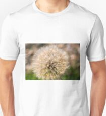 Dandelion blowball. Photographed in Armenia  Unisex T-Shirt