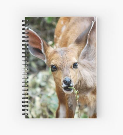 THIS IS NICE - THE BUSHBUCK - Tragelaphus scriptus Spiral Notebook