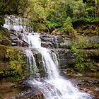 The Liffey Falls, Tasmania by Christine Smith