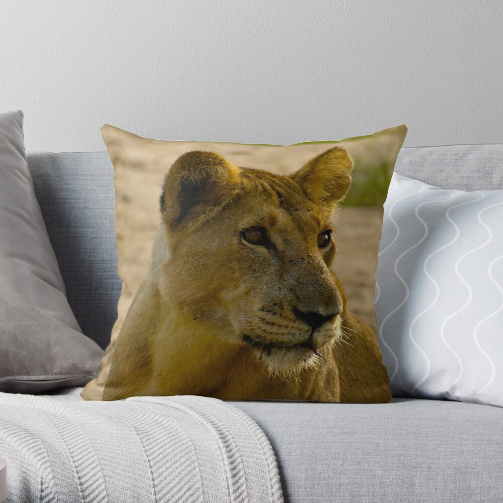 pregnant lioness relaxed Throw Pillow