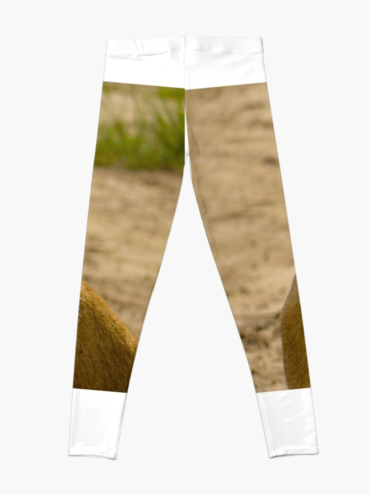 Alternate view of pregnant lioness relaxed Leggings