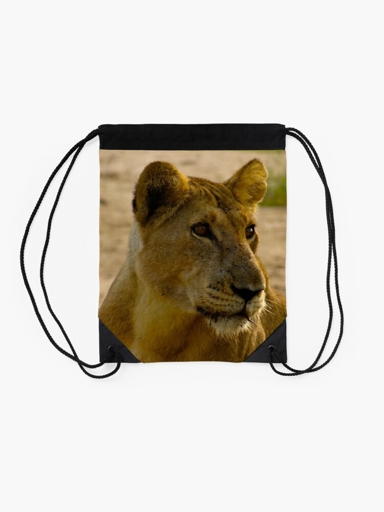 Alternate view of pregnant lioness relaxed Drawstring Bag