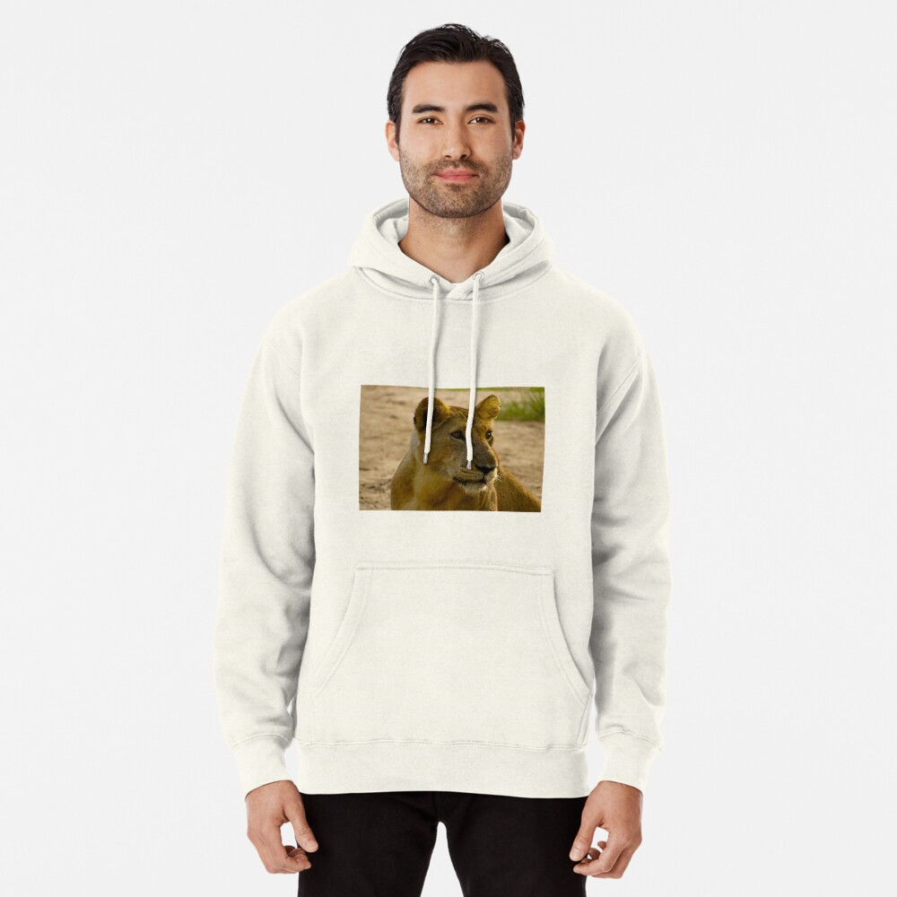 pregnant lioness relaxed Pullover Hoodie