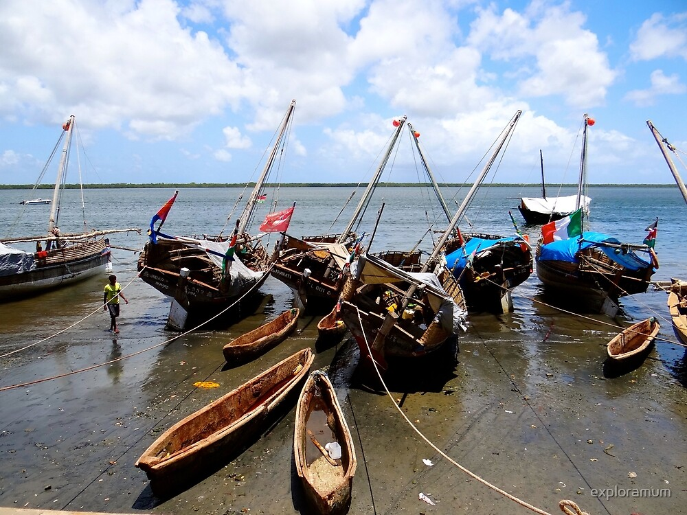 Lamu Island - wooden fishing dhows at low tide by exploramum