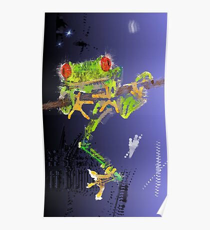 Red-Eyed Green Tree Frog at Night Poster