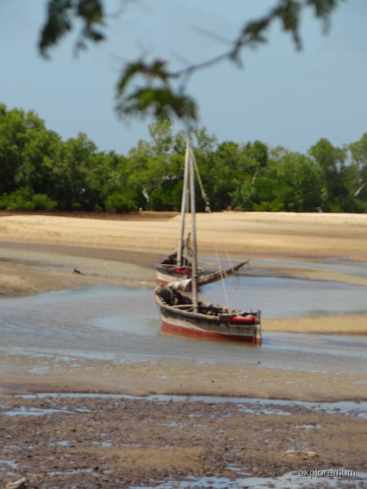 Lamu Island - wooden fishing dhows at low tide 1 by exploramum