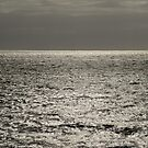 Sea shimmering in the sun by quentinjlang