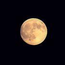 Lune D'or by Jarede Schmetterer