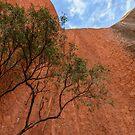 Uluru 09 by Werner Padarin