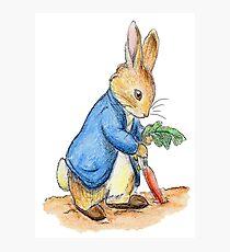Nursery Characters, Peter Rabbit, Beatrix Potter. Photographic Print