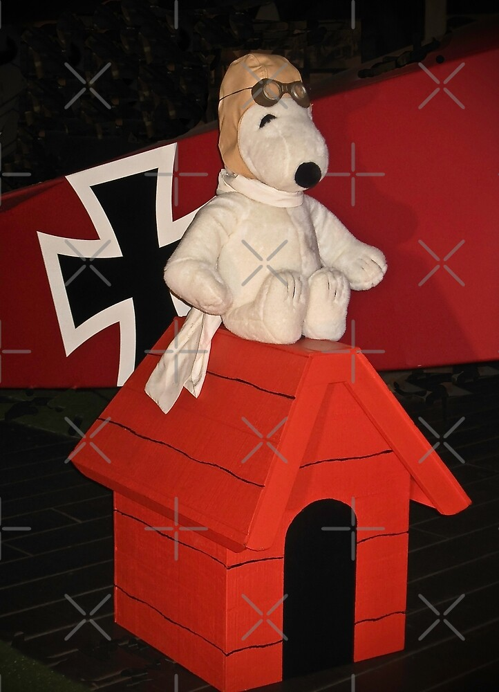 Snoopy and the Red Baron! by Heather Friedman