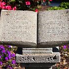 Holy Bible In Stone by Cynthia48