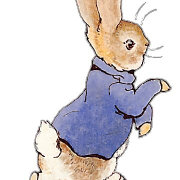 Nursery Characters, Peter Rabbit, Beatrix Potter. In his blue jacket by TOMSREDBUBBLE