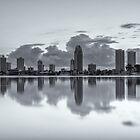 Gold Coast Skyline  by Ann Pinnock