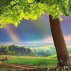 Zigzagging Meadow by Igor Zenin