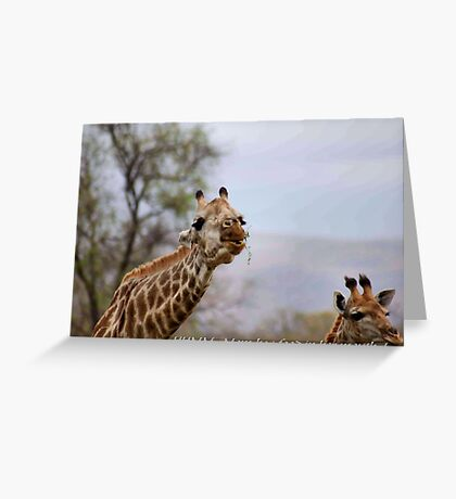 ARE YOU TALKING TO ME ....? Greeting Card