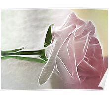 Single Pink Rose Basics Poster