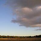 Salvador's Sky by spike