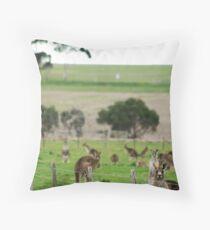 Grey Kangaroos Throw Pillow