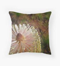 Banksia - Cooktown Throw Pillow