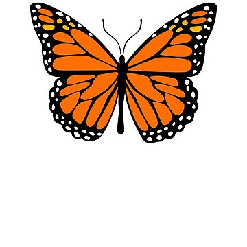 Love The Monarch Butterfly by pablomendoza