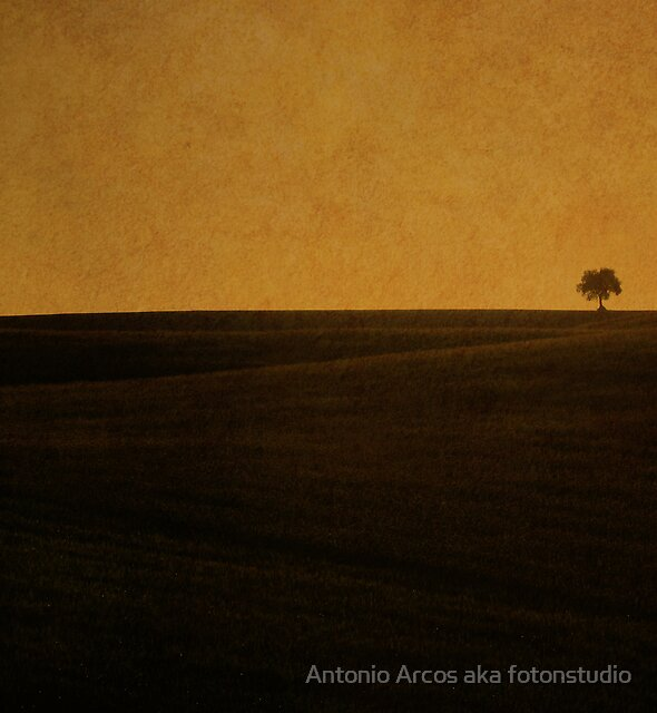 Simple Things. by Antonio Arcos aka fotonstudio